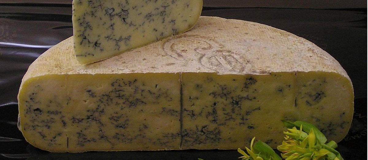 Bleu de Gex Haut-Jura | Local Cheese From Jura, France