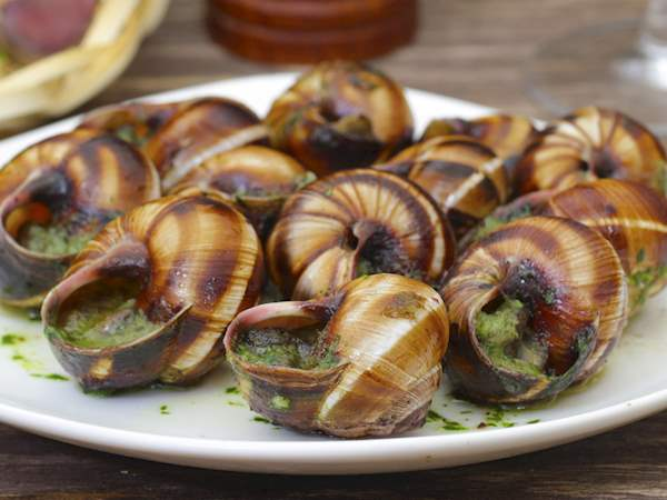 Image result for escargot