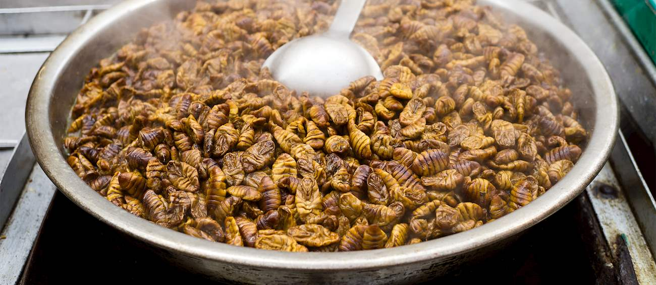 10 Most Popular Insect Dishes in the World