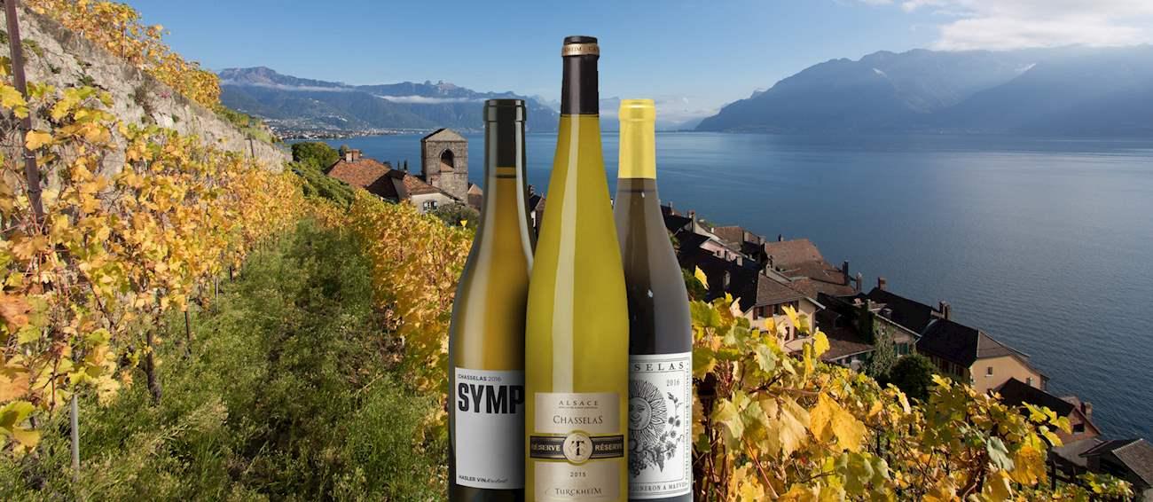 10 Most Popular Central European Wine Varieties
