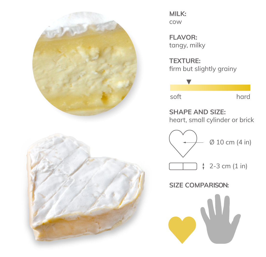 10 Most Popular French Cow S Milk Cheeses Tasteatlas