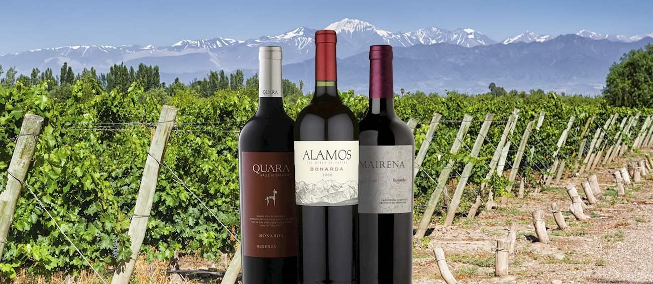 3 Most Popular Argentinian Wine Varieties