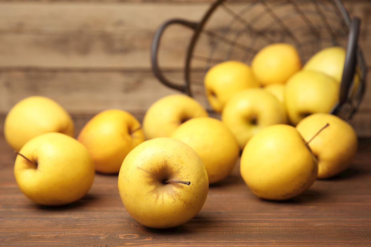10 Most Popular American Apples