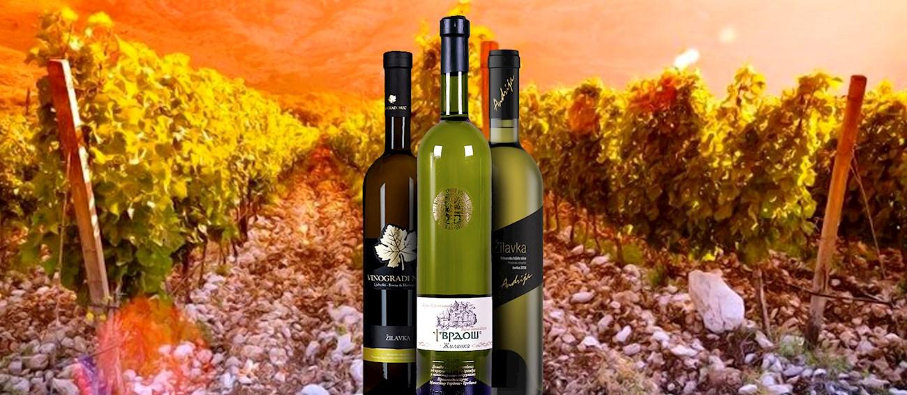 3 Most Popular Bosnian and Herzegovinian Wine Varieties